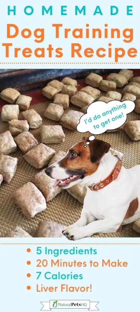 Easy liver dog training treats recipe Pinterest graphic