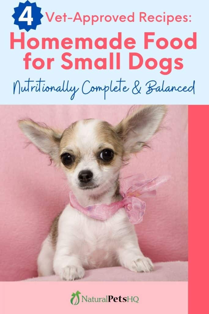 Vet Approved Recipes for Homemade Dog Food for Small Dogs (Pinterest Graphic)