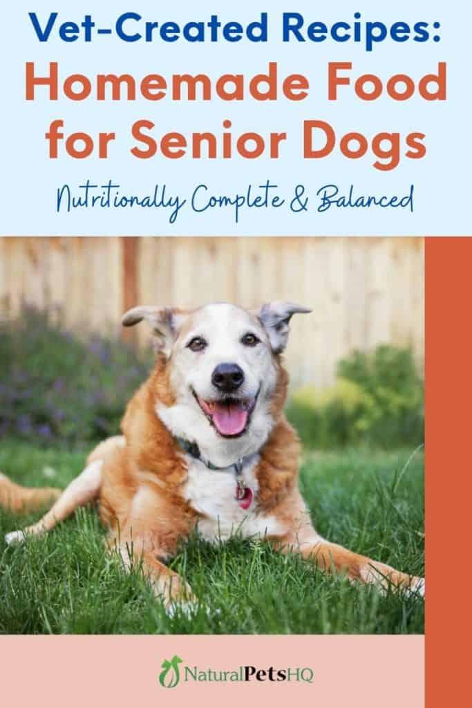 homemade food for senior dogs Pinterest graphic